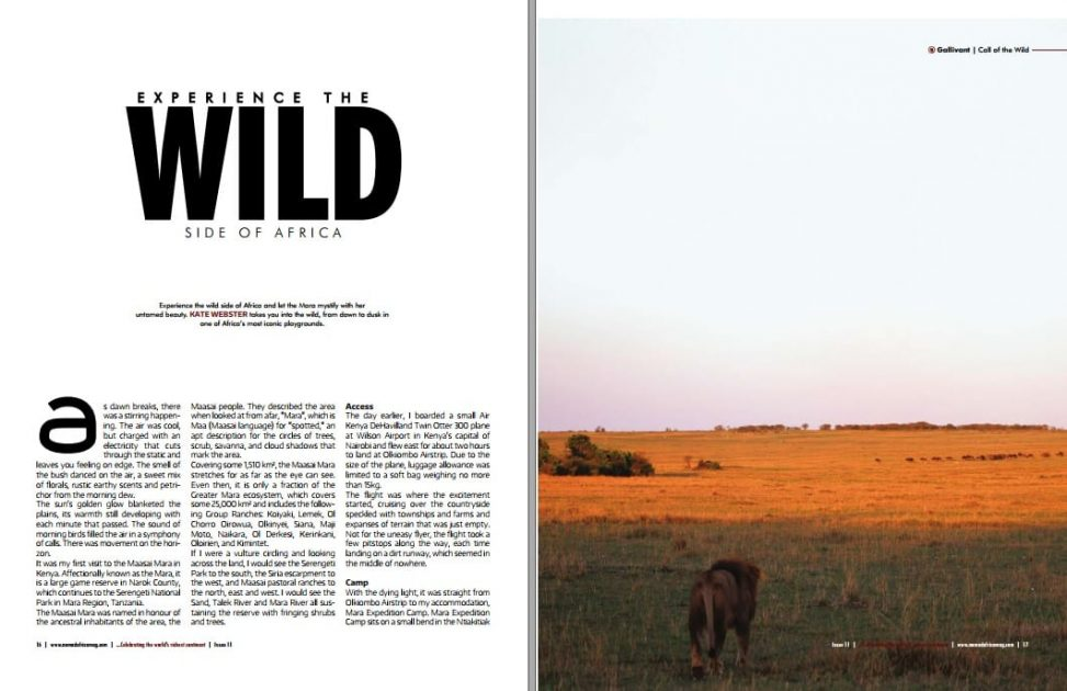 Traveller Kate - Into the Wild