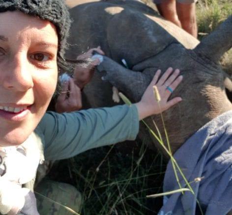 Kate Rhino
