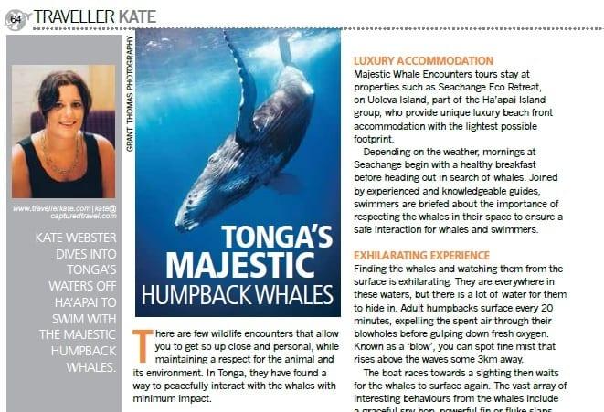 Tonga's majestic Whales
